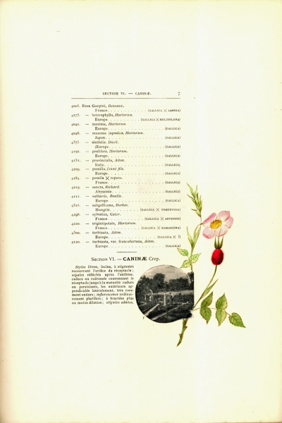 1900-GE-RdlH-Catalogue-Viger-p007a_wp