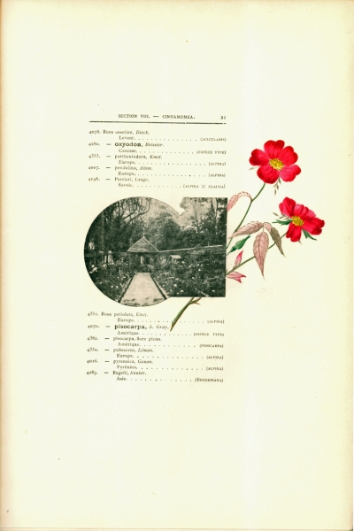 1900-GE-RdlH-Catalogue-Viger-p021a_wp