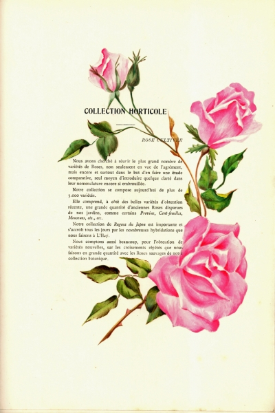 1900-GE-RdlH-Catalogue-Viger-p037a_wp