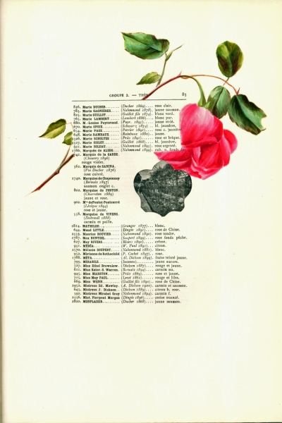 1900-GE-RdlH-Catalogue-Viger-p083a_wp