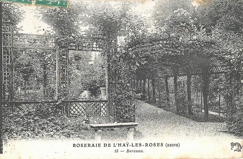 035-3©-18-ROSERAIE-DE-LHAY-LES-ROSES-SEINE-Berceau_wp