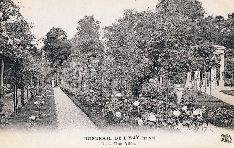 066-1©-71-ROSERAIE-DE-LHAY-SEINE-Une-Allée_wp