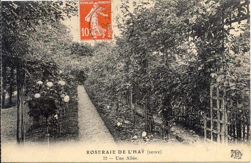 127©-72-ROSERAIE-DE-LHAY-SEINE-Une-Allée_wp