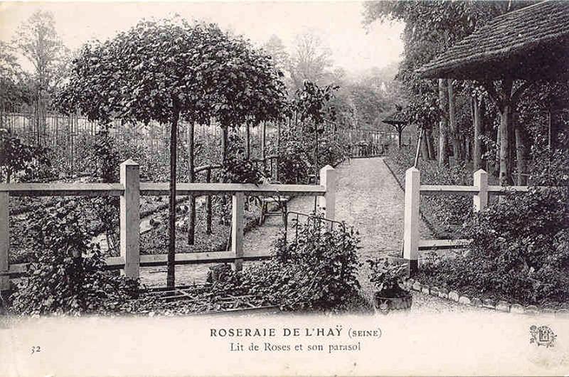 155©-32-ROSERAIE-DE-LHAY-Lit-de-roses-et-son-parasol_wp
