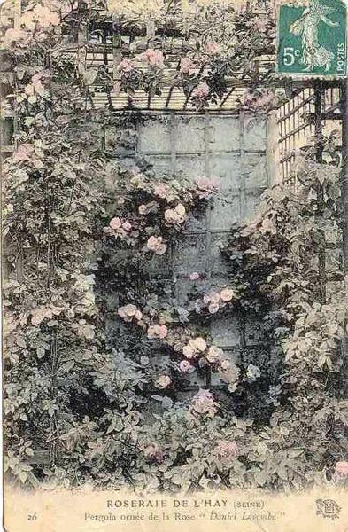 177©-26-ROSERAIE-DE-LHAY-LES-ROSES-SEINE-Pergola-ornée-de-la-Rose-Daniel-Lacombe_wp