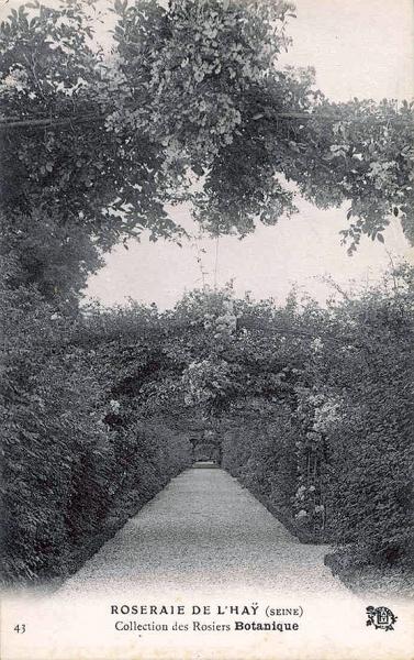 183©-43-ROSERAIE-DE-LHAY-SEINE-Collection-des-Rosiers-Botanique_wp