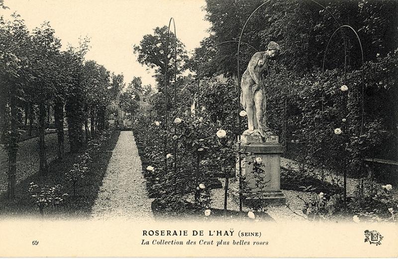 276-2©-69-ROSERAIE-DE-LHAY-SEINE-La-Collection-des-Cent-plus-belles-Roses_wp