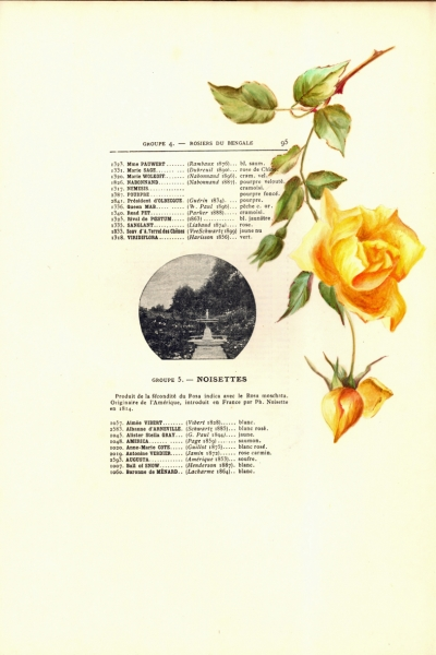 1900-GE-RdlH-Catalogue-Viger-p095a_wp