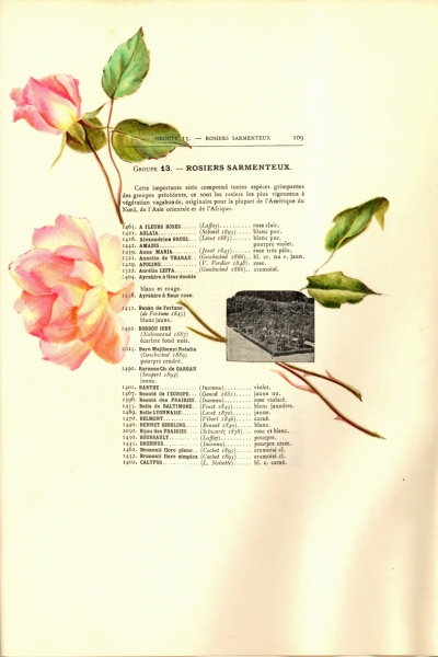 1900-GE-RdlH-Catalogue-Viger-p109a_wp