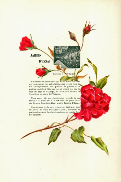 1900-GE-RdlH-Catalogue-Viger-p117a_wp