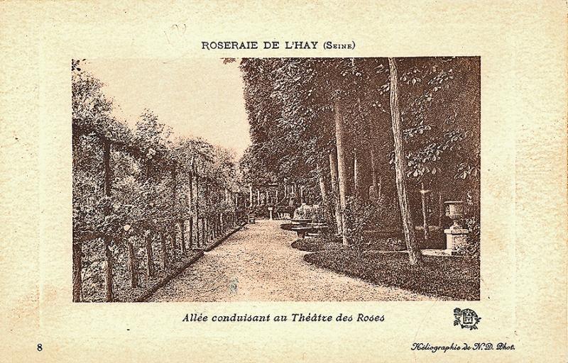 157-2©-8-ROSERAIE-DE-LHAY-SEINE-Allée-conduisant-au-Théâtre-des-Roses-2_wp