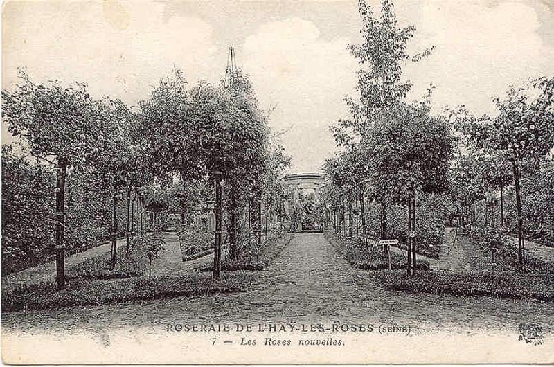 129-1©-7-ROSERAIE-DE-LHAY-LES-ROSES-Les-Roses-nouvelles_wp