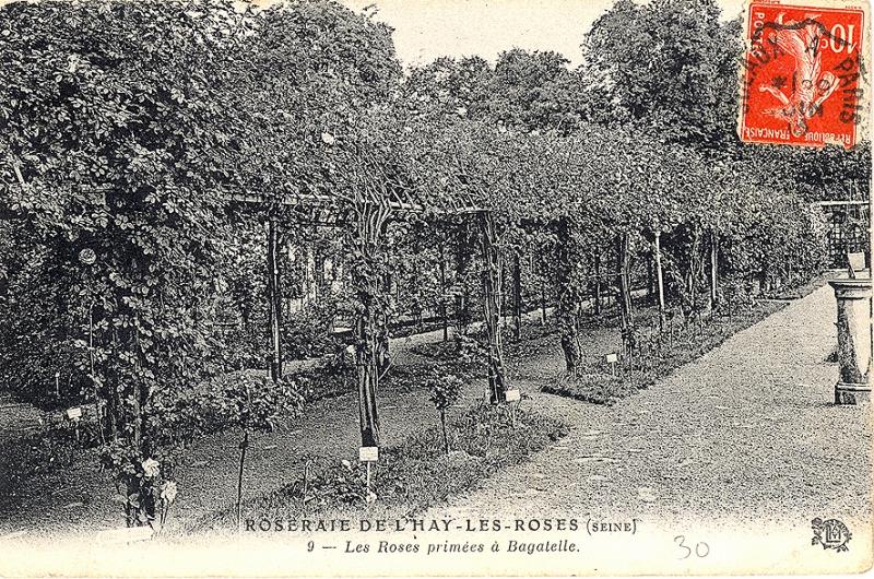 275-1@-9-ROSERAIE-DE-LHAY-LES-ROSES-SEINE-Les-roses-primées-à-Bagatelle_wp