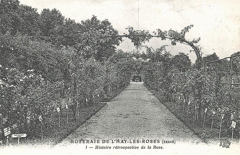 294-2©-1-ROSERAIE-DE-LHAY-SEINE-Histoire-rétrospective-de-la-Rose_wp