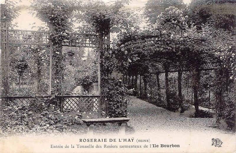 035-1©-2-ROSERAIE-DE-LHAY-SEINE-Entrée-de-la-Tonnelle_wp