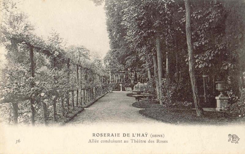 157-36-ROSERAIE-DE-LHAY-SEINE-Allee-conduisant-au-Theatre-des-Roses_wp