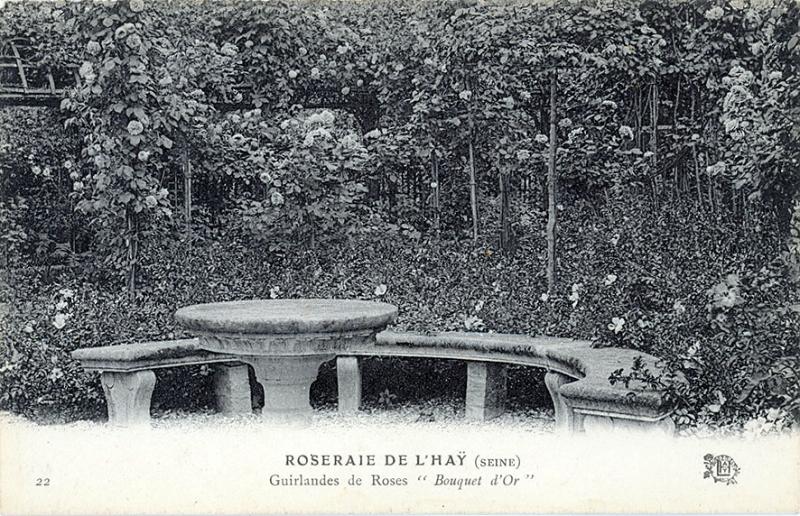 290©-22-ROSERAIE-DE-LHAY-SEINE-Guirlande-de-Roses-Bouquet-dOr_wp